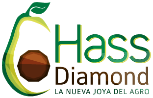 Hass Diamond Company